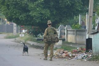 timor-2006-352