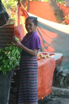 timor-2006-353