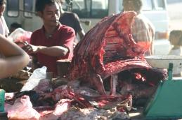 timor-2006-356