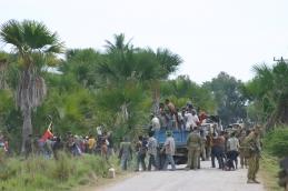 timor-2006-403