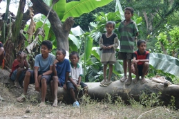 timor-2006-483