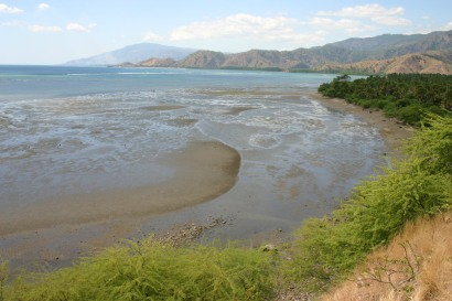 timor-2006-699