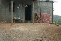 timor-2006-742