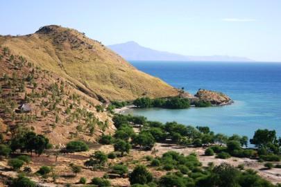 timor-2006-814