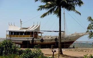 timor-2006-850