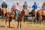 20170225_glenn-power_coorong_district_council_campdrafting_s-7365
