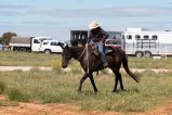 20170225_glenn-power_coorong_district_council_campdrafting_s-7532