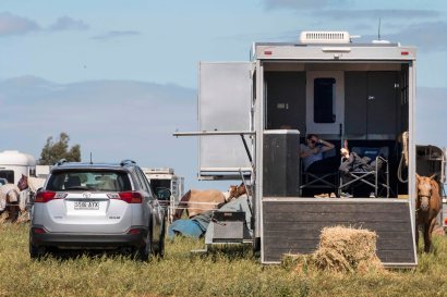 20170225_glenn-power_coorong_district_council_campdrafting_s-7536