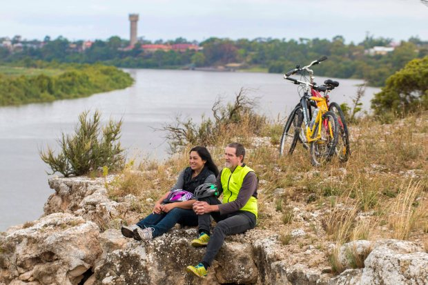 20170223_Glenn Power_Coorong_District_Council_Bike_Trail_Tailem Bend_Big_Olive_S 6525