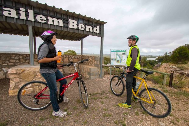 20170223_Glenn Power_Coorong_District_Council_Bike_Trail_Tailem Bend_Big_Olive_S 6640