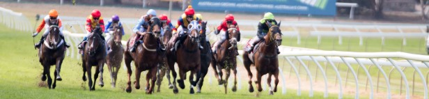20170419_Glenn Power_RSL_HORSE_RACING_S P 0541