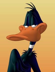 daffy_duck